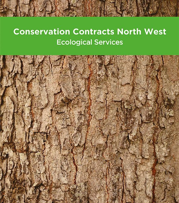 New Brochure  Ecological Services