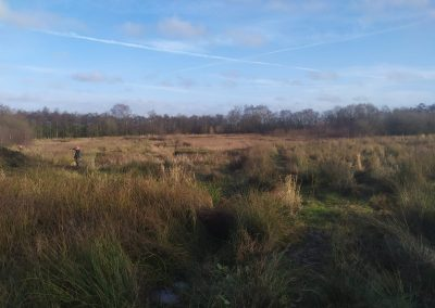Three Sisters, Wigan – Wetland Enhancement
