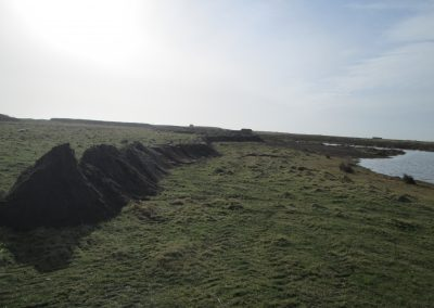 South Walney Island Reserve – Habitat Management