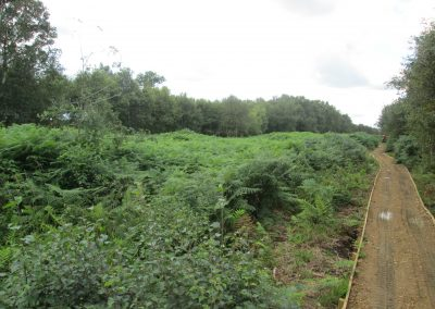 Little Woolden Moss, Culcheth – Vegetation Clearance