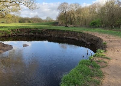 Yarrow Valley Country Park, Chorley – Habitat Improvements Phase 2