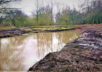 Court Hey Wetland Project, Knowsley